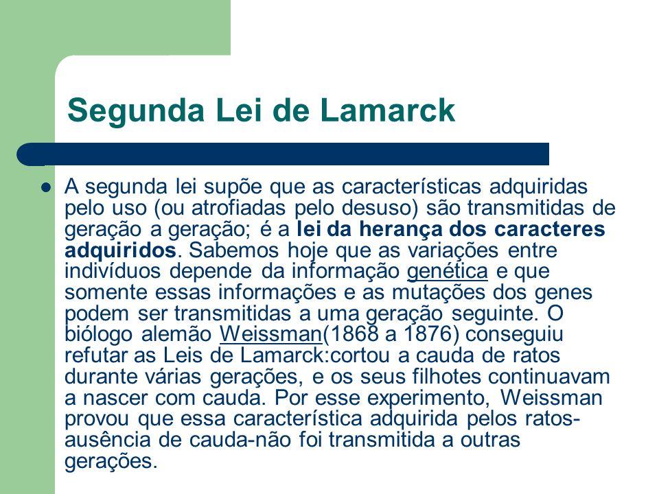 Segunda Lei de Lamarck A segunda lei supõe que as características adquiridas pelo uso (ou atrofiadas pelo desuso) são transmitidas de geração a geraçã