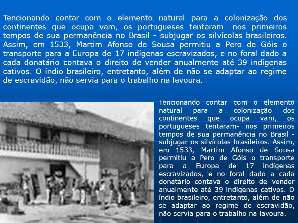 Tencionando contar com o elemento natural para a colonização dos continentes que ocupa vam, os portugueses tentaram- nos primeiros tempos de sua perma