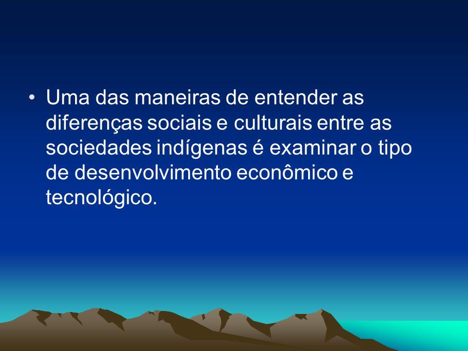 Uma das maneiras de entender as diferenças sociais e culturais entre as sociedades indígenas é examinar o tipo de desenvolvimento econômico e tecnológ