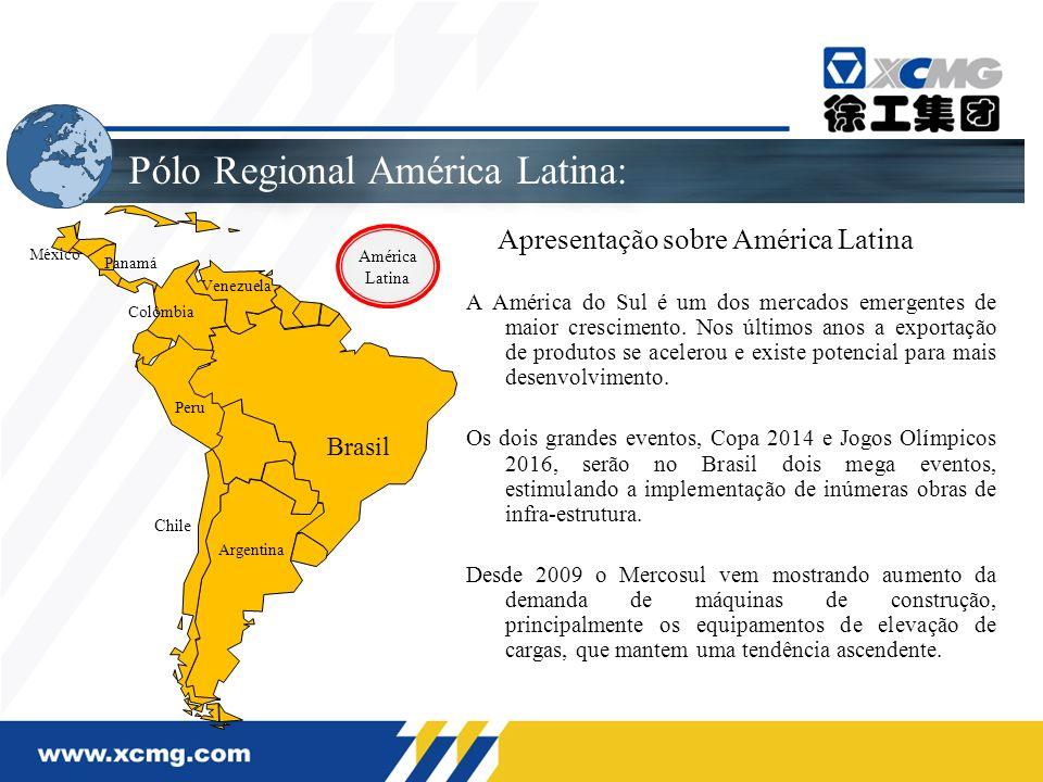 Mercado Argentino Sub-dealer atual Novos sub-dealers Principal atuação: De máquinas de elevação de cargas e terraplanagem para equipamentos de concreto e mineração.