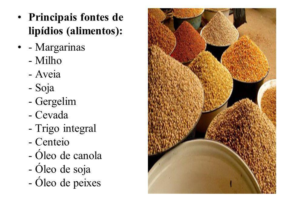 Principais fontes de lipídios (alimentos): - Margarinas - Milho - Aveia - Soja - Gergelim - Cevada - Trigo integral - Centeio - Óleo de canola - Óleo