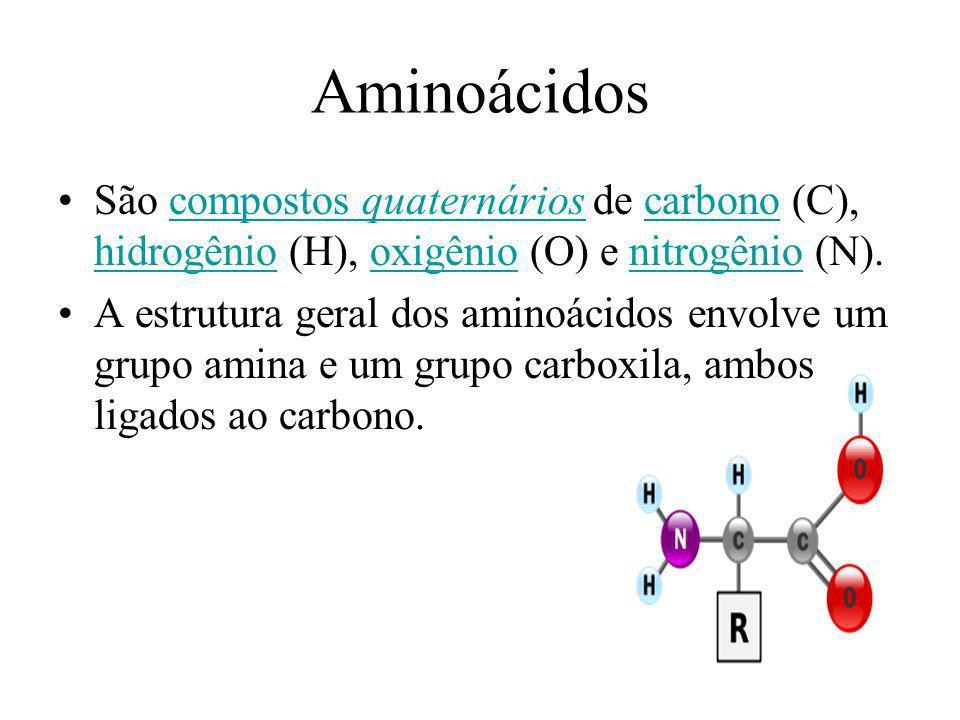 Aminoácidos São compostos quaternários de carbono (C), hidrogênio (H), oxigênio (O) e nitrogênio (N).compostos quaternárioscarbono hidrogêniooxigênion