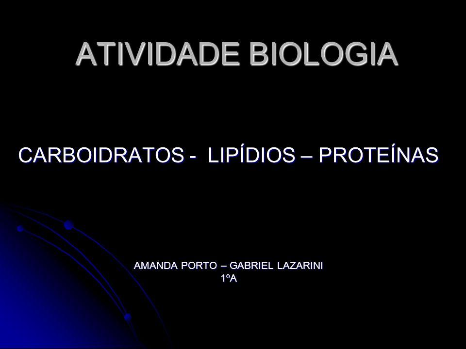 ATIVIDADE BIOLOGIA CARBOIDRATOS - LIPÍDIOS – PROTEÍNAS AMANDA PORTO – GABRIEL LAZARINI 1ºA