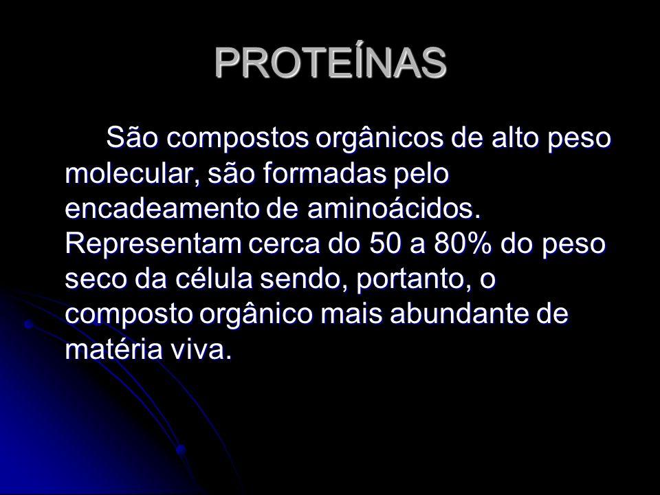 PROTEÍNAS São compostos orgânicos de alto peso molecular, são formadas pelo encadeamento de aminoácidos. Representam cerca do 50 a 80% do peso seco da