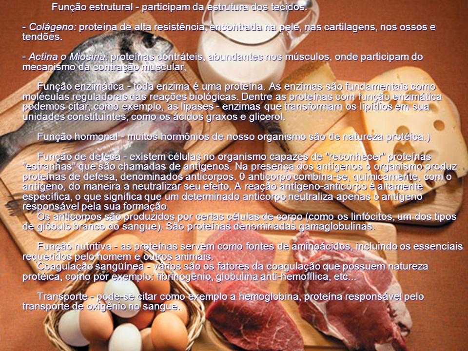 Função estrutural - participam da estrutura dos tecidos. - Colágeno: proteína de alta resistência, encontrada na pele, nas cartilagens, nos ossos e te