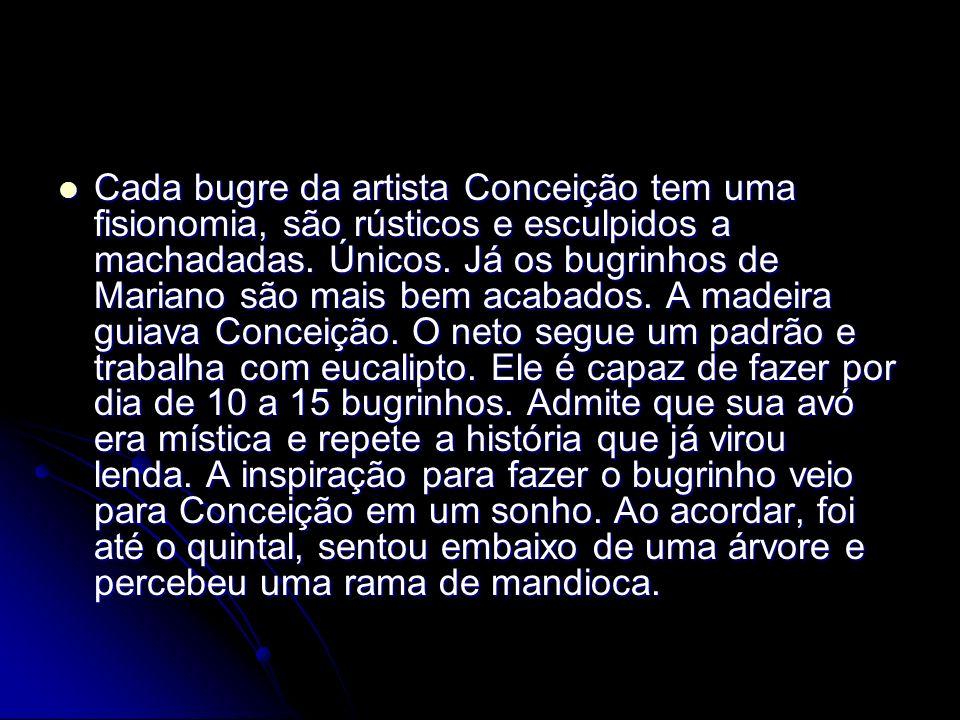 Cada bugre da artista Conceição tem uma fisionomia, são rústicos e esculpidos a machadadas.