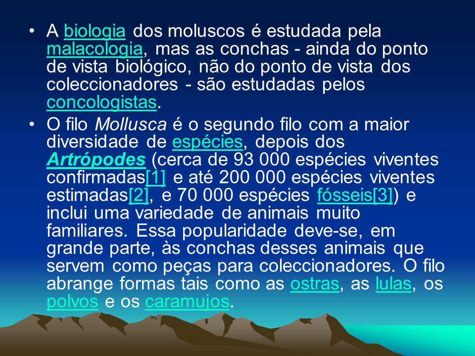 A biologia dos moluscos é estudada pela malacologia, mas as conchas - ainda do ponto de vista biológico, não do ponto de vista dos coleccionadores - s