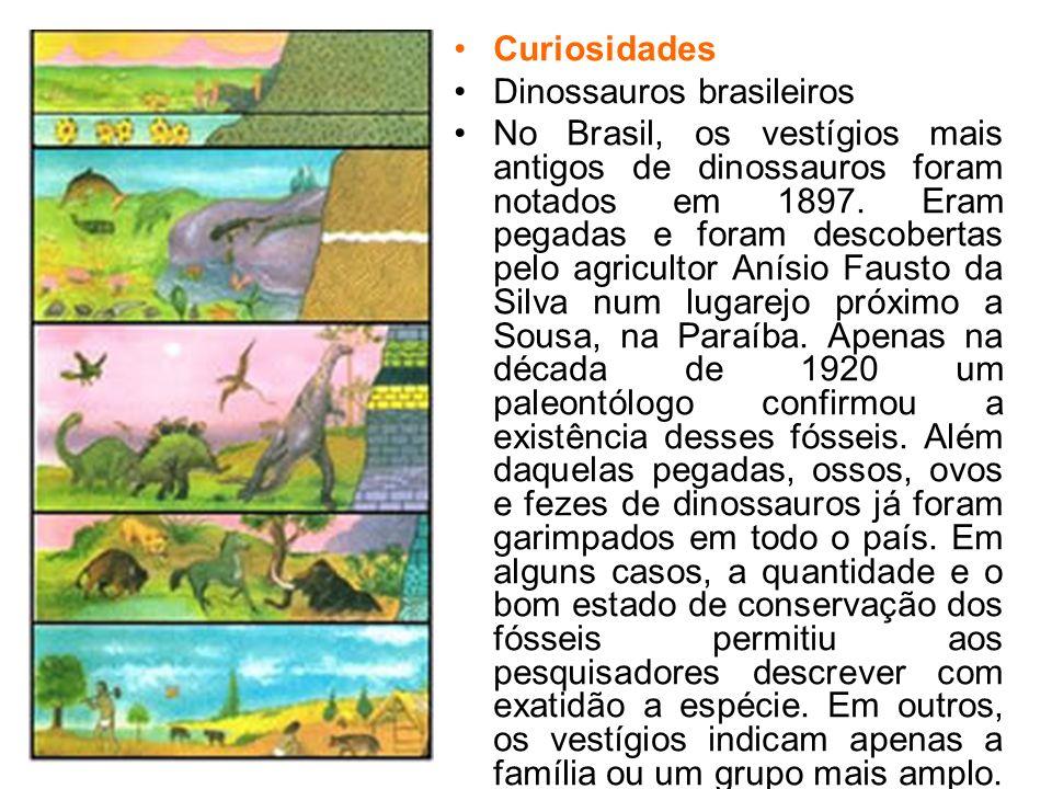 Curiosidades Dinossauros brasileiros No Brasil, os vestígios mais antigos de dinossauros foram notados em 1897. Eram pegadas e foram descobertas pelo