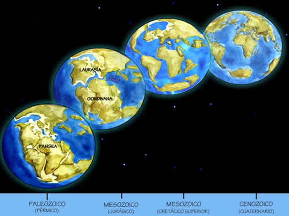 Curiosidades Dinossauros brasileiros No Brasil, os vestígios mais antigos de dinossauros foram notados em 1897.