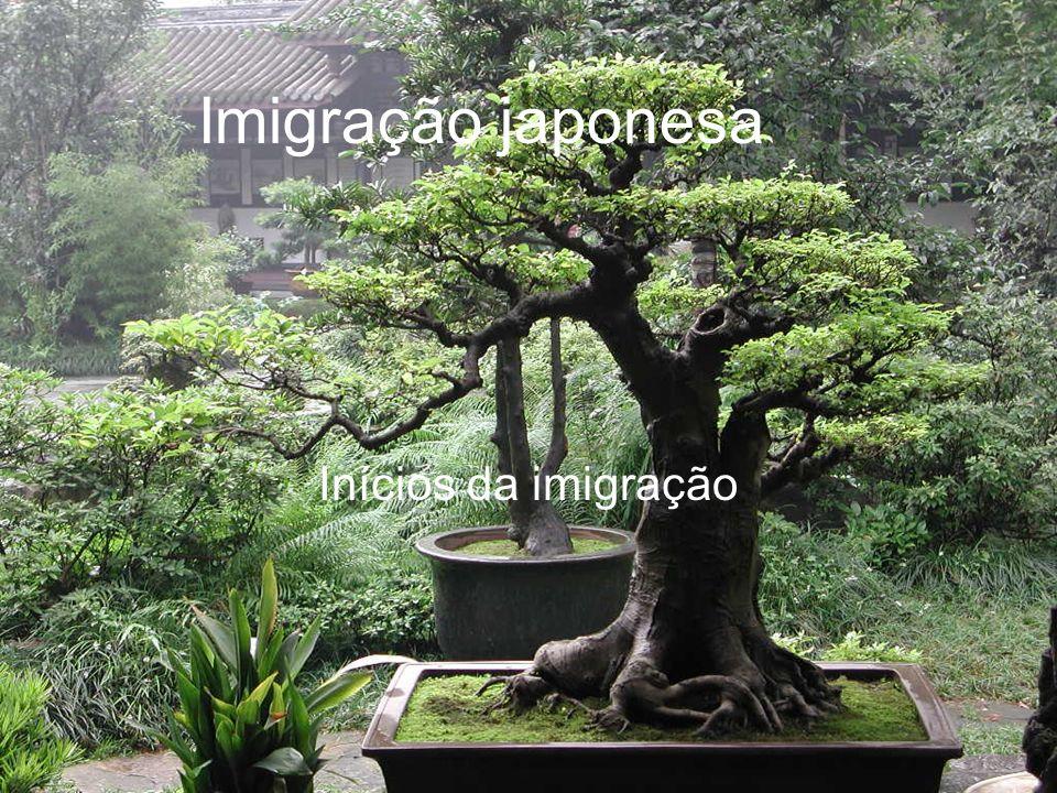 Introdução No ano de 2008, comemoramos, aqui no Brasil, 100 anos da imigração japonesa.