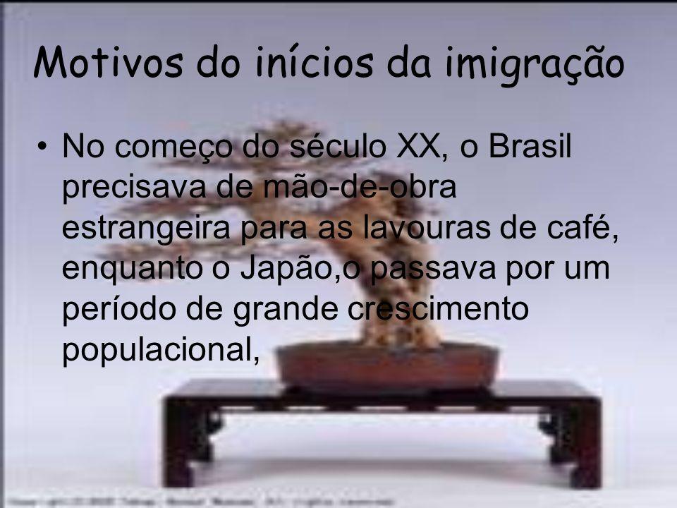 Motivos do inícios da imigração No começo do século XX, o Brasil precisava de mão-de-obra estrangeira para as lavouras de café, enquanto o Japão,o pas