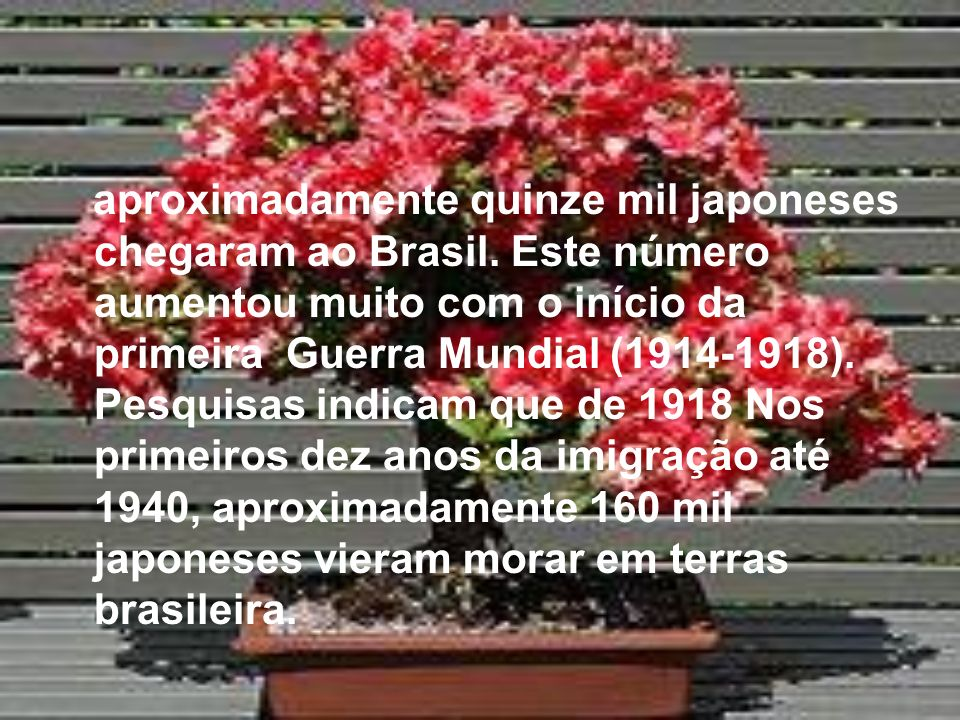 aproximadamente quinze mil japoneses chegaram ao Brasil. Este número aumentou muito com o início da primeira Guerra Mundial (1914-1918). Pesquisas ind