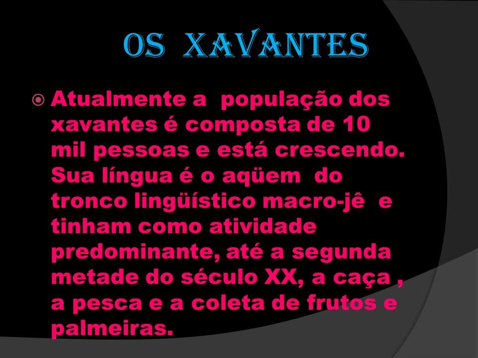 OS XAVANTES Atualmente a população dos xavantes é composta de 10 mil pessoas e está crescendo. Sua língua é o aqüem do tronco lingüístico macro-jê e t