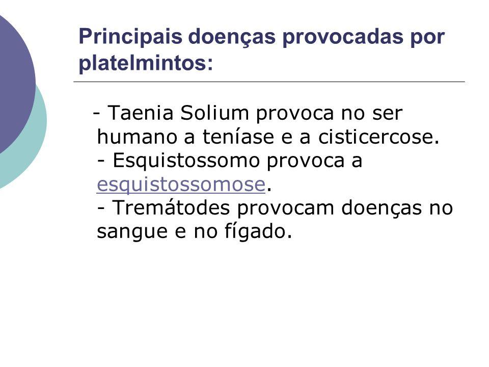 Principais doenças provocadas por platelmintos: - Taenia Solium provoca no ser humano a teníase e a cisticercose. - Esquistossomo provoca a esquistoss