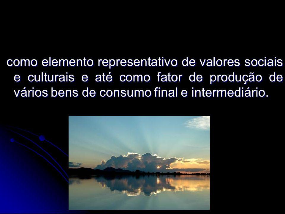como elemento representativo de valores sociais e culturais e até como fator de produção de vários bens de consumo final e intermediário. como element