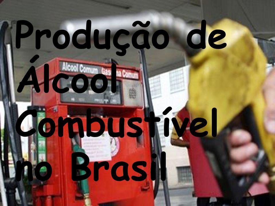 A queima da palha do canavial visa facilitar e baratear o corte manual, mas no Brasil as queimadas são uma prática proibida por lei há vários anos.