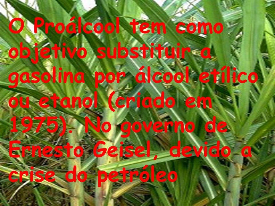 O uso de produtos agrotóxicos sem controle, e o despejo do mesmo, perto ou até em rios.
