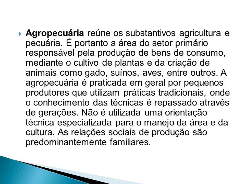 Agropecuária reúne os substantivos agricultura e pecuária. É portanto a área do setor primário responsável pela produção de bens de consumo, mediante