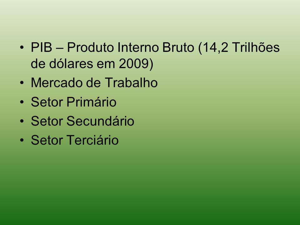 PIB – Produto Interno Bruto (14,2 Trilhões de dólares em 2009) Mercado de Trabalho Setor Primário Setor Secundário Setor Terciário
