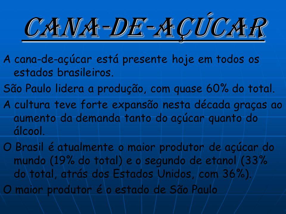 Cana-de-açúcar A cana-de-açúcar está presente hoje em todos os estados brasileiros.