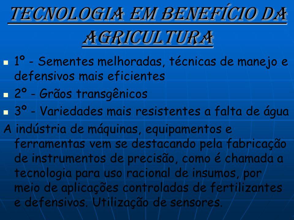 Laranja São Paulo é o líder absoluto na produção de laranja do Brasil, com quase 80% da colheita total.