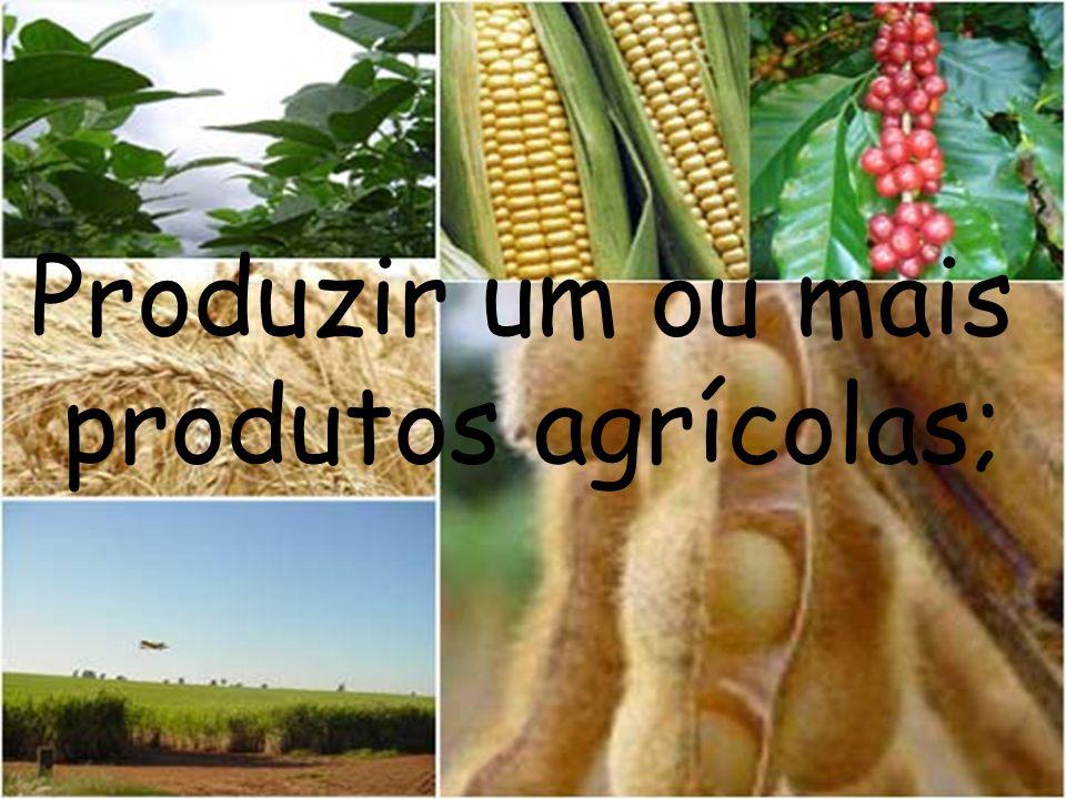 Produzir um ou mais produtos agrícolas;