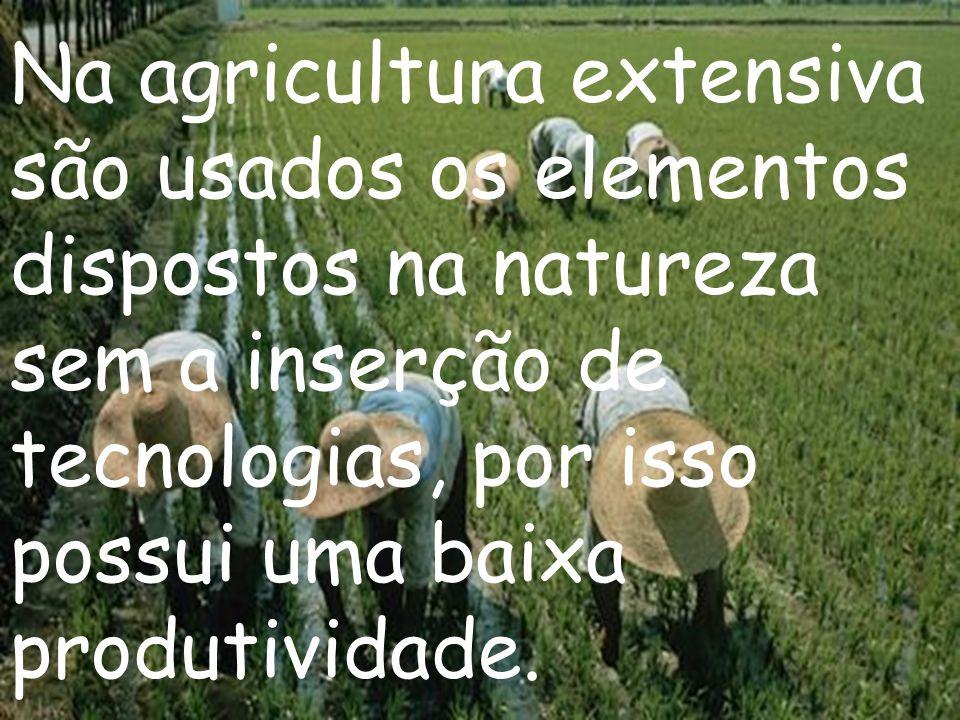 Na agricultura extensiva são usados os elementos dispostos na natureza sem a inserção de tecnologias, por isso possui uma baixa produtividade.