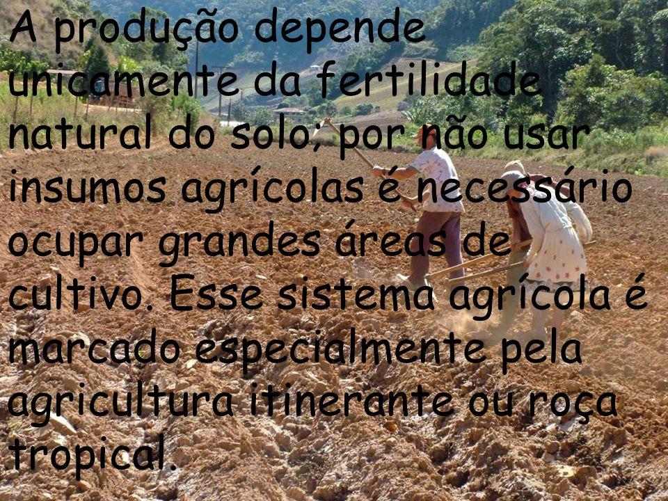 A produção depende unicamente da fertilidade natural do solo; por não usar insumos agrícolas é necessário ocupar grandes áreas de cultivo. Esse sistem