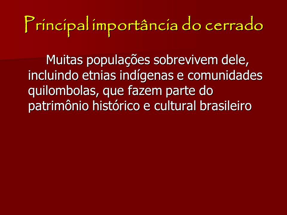 Principal importância do cerrado Muitas populações sobrevivem dele, incluindo etnias indígenas e comunidades quilombolas, que fazem parte do patrimôni