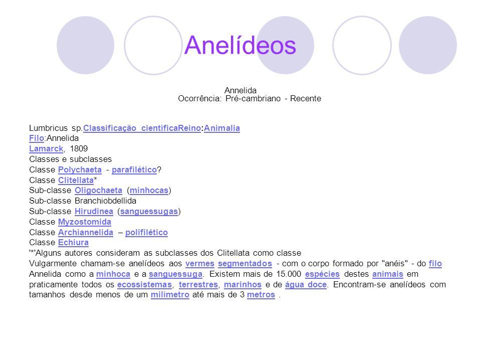 Anelídeos Annelida Ocorrência: Pré-cambriano - Recente Lumbricus sp.Classificação científicaReino:AnimaliaClassificação científicaReinoAnimalia FiloFi