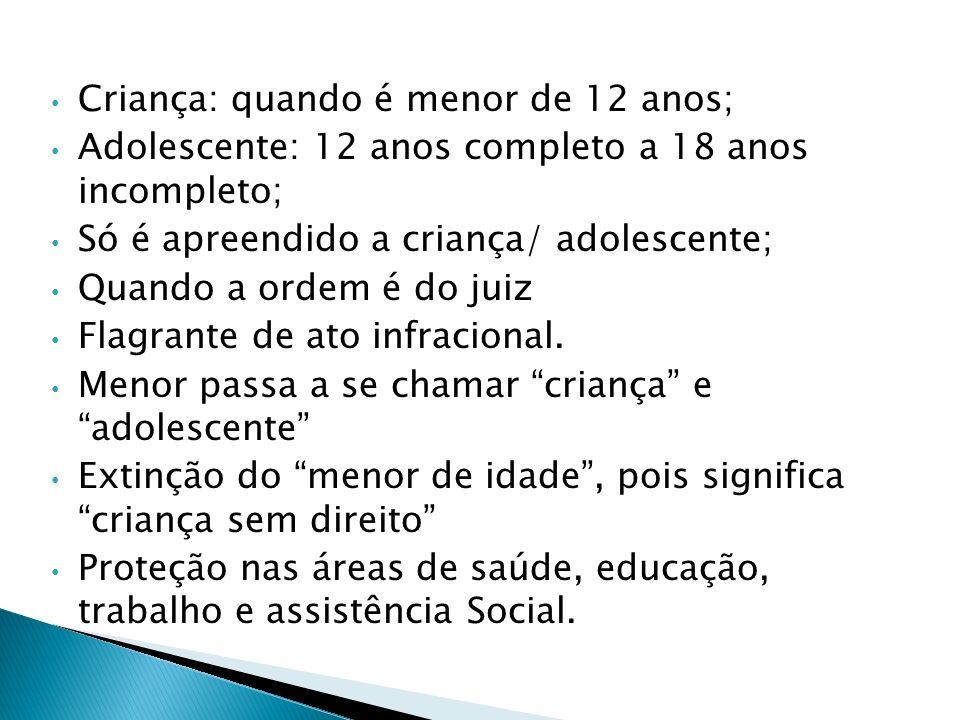 Dos filhos pobres e excluídos, chamados menores; Aumento de abrigo de crianças pobres; Estatuto da Criança e Adolescente – ECA 13 de julho de 1990; Cr