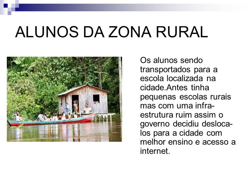 AGRICULTURA FAMILIAR A agricultura familiar continua sendo a principal geradora de empregos na zona rural.