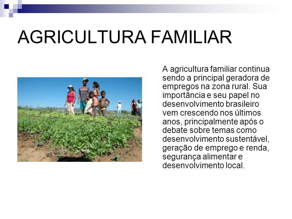 Com tantas pessoas trabalhando na agricultura, elas não conseguem obter uma renda, para sustentarem suas famílias e acabam fazendo trabalhos extras fora de suas propriedades.