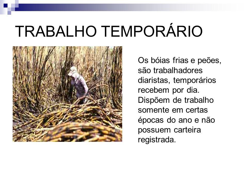 BÓIAS FRIAS É uma mão de obra que o seu principal trabalho é à agroindústria da cana-de-açúcar, laranja, algodão e café, trabalhando apenas no período do plantio e da colheita.