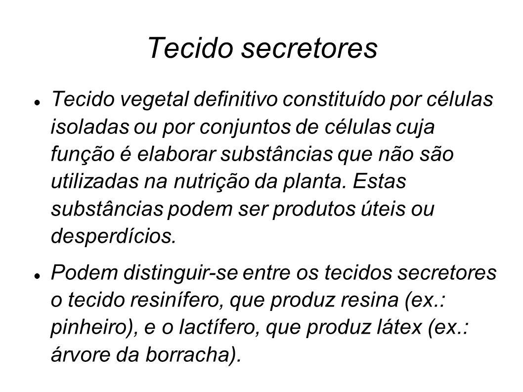 Tecido secretores Tecido vegetal definitivo constituído por células isoladas ou por conjuntos de células cuja função é elaborar substâncias que não sã