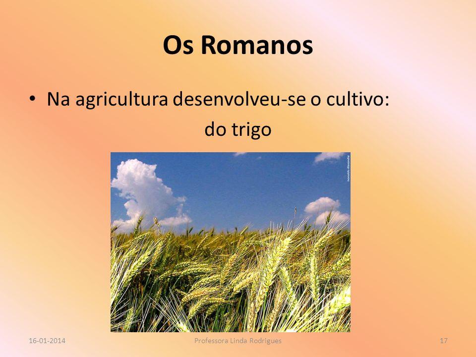 Os Romanos Na agricultura desenvolveu-se o cultivo: do trigo 16-01-2014Professora Linda Rodrigues17