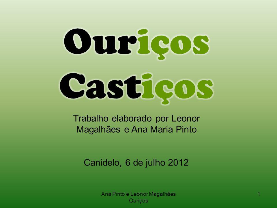 1Ana Pinto e Leonor Magalhães Ouriços