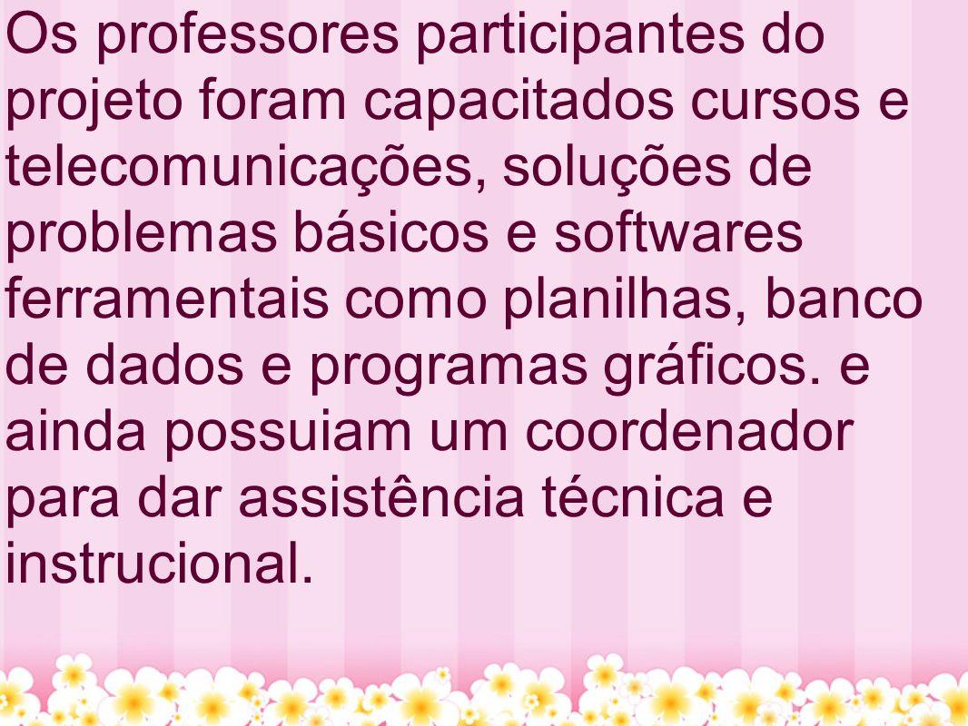 Os professores participantes do projeto foram capacitados cursos e telecomunicações, soluções de problemas básicos e softwares ferramentais como planilhas, banco de dados e programas gráficos.