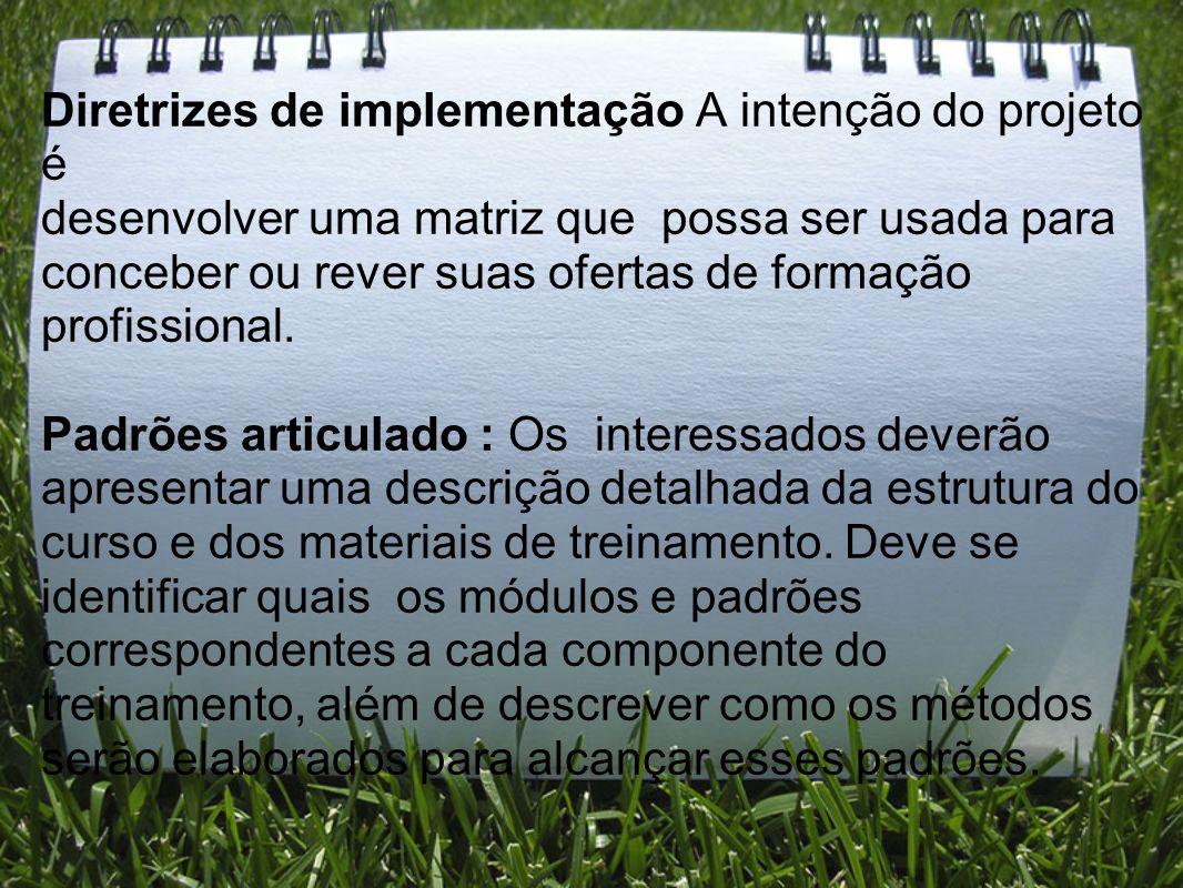 Diretrizes de implementação A intenção do projeto é desenvolver uma matriz que possa ser usada para conceber ou rever suas ofertas de formação profiss