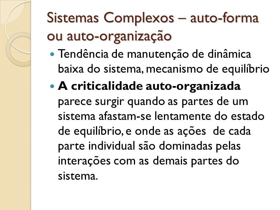 Sistemas Complexos – auto-forma ou auto-organização Tendência de manutenção de dinâmica baixa do sistema, mecanismo de equilíbrio A criticalidade auto