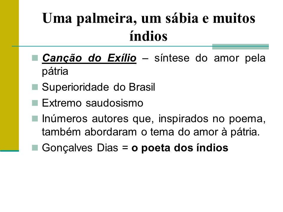 Uma palmeira, um sábia e muitos índios Canção do Exílio – síntese do amor pela pátria Superioridade do Brasil Extremo saudosismo Inúmeros autores que, inspirados no poema, também abordaram o tema do amor à pátria.