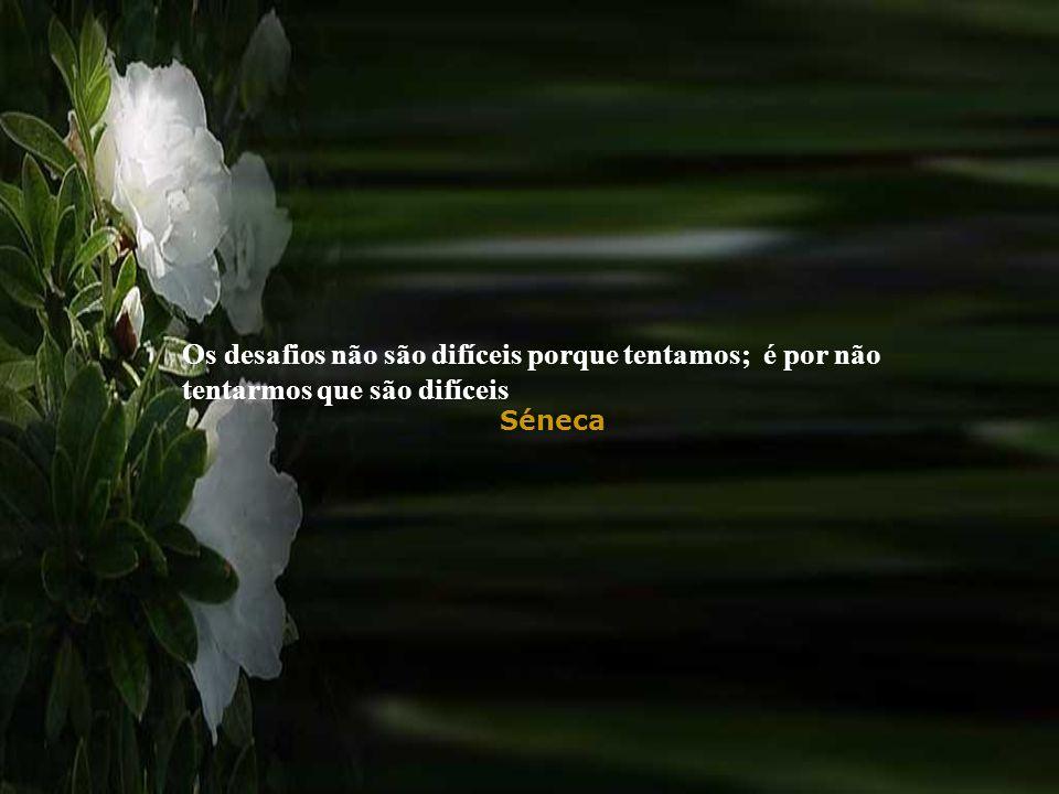 Séneca Os desafios não são difíceis porque tentamos; é por não tentarmos que são difíceis