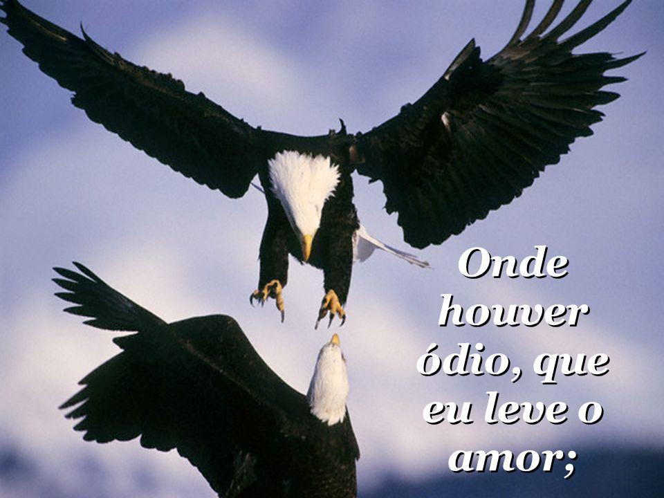 compreender que ser compreendido; compreender que ser compreendido;