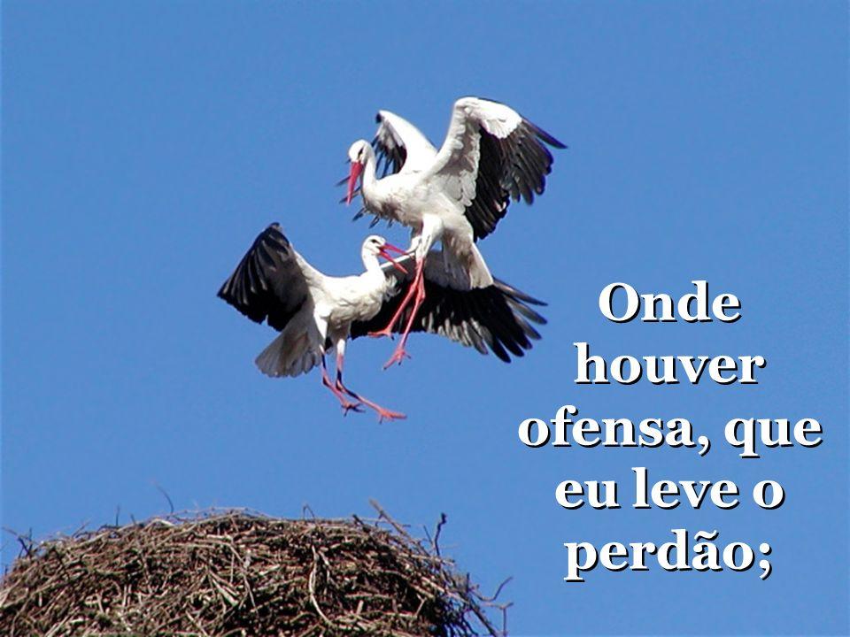 Onde houver ofensa, que eu leve o perdão; Onde houver ofensa, que eu leve o perdão;