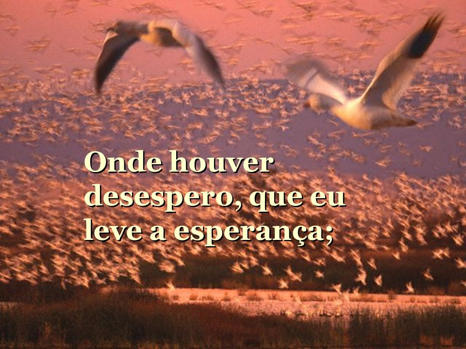Ó Mestre, Fazei que eu procure mais consolar, que ser consolado; compreender que ser compreendido; amar, que ser amado.
