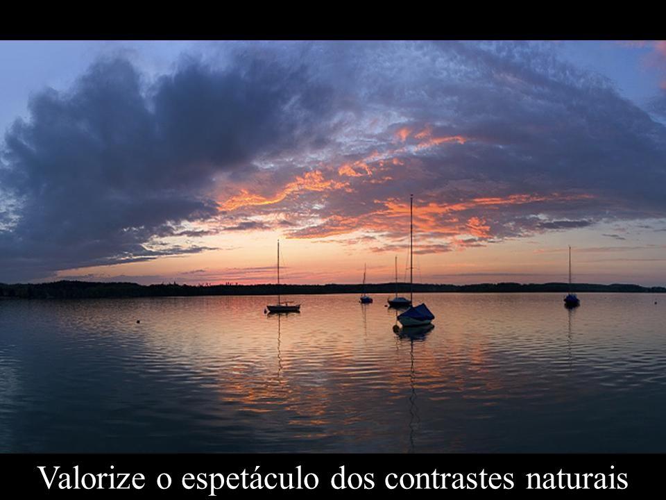 Valorize o espetáculo dos contrastes naturais