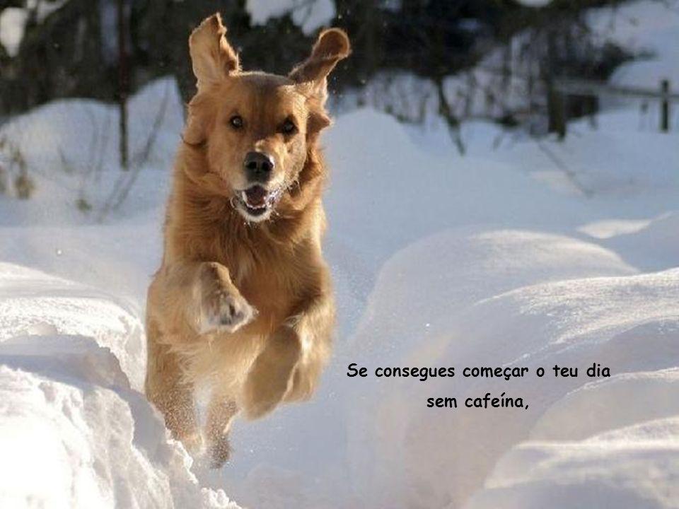 Se consegues começar o teu dia sem cafeína,
