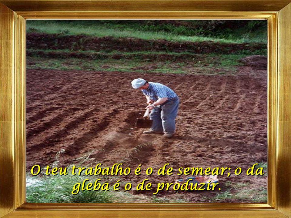 O teu trabalho é o de semear; o da gleba é o de produzir.