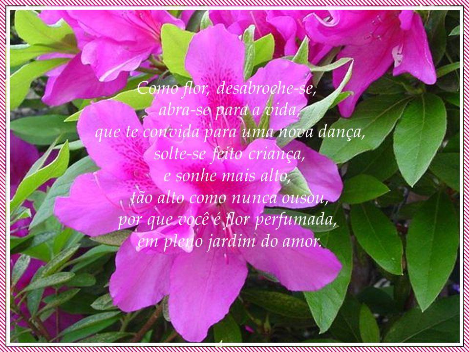 Como flor, desabroche-se, abra-se para a vida, que te convida para uma nova dança, solte-se feito criança, e sonhe mais alto, tão alto como nunca ousou, por que você é flor perfumada, em pleno jardim do amor.