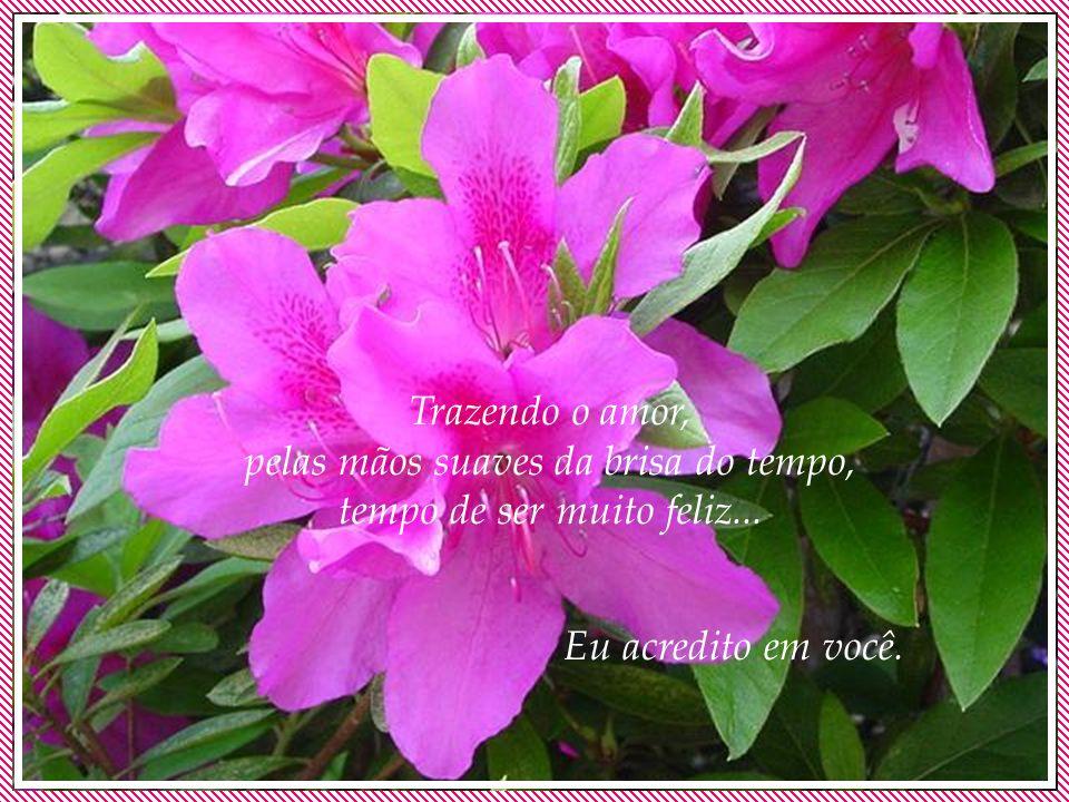 Então, a porta está aberta, a flor desabrocha agora, a chuva lava toda a tarde, para a noite ser perfumada, pelo cheiro da terra molhada, trazendo opo